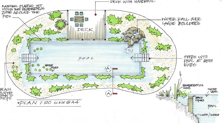 Natural Swimming Pool Plan